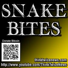 C 226 U Like Everywhere - snakebites 121 scary times halloween 2014 snakebites podcast