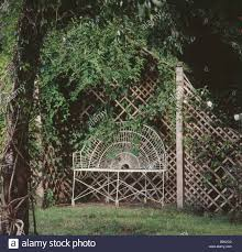 white metal bench in trellis arbour with climbing rose in country