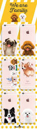 bichon frise iphone 5 case teddy clear iphone case