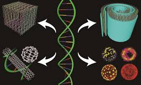 dna nanotechnology a future perspective nanoscale research