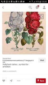 81 best hollyhock images on pinterest botany art flowers and