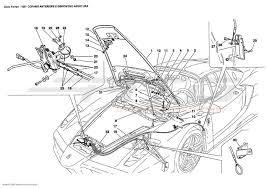 ferrari front drawing ferrari enzo body parts at atd sportscars atd sportscars
