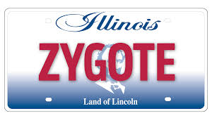 ny vanity plates illinois drivers so vain but not all plates get state ok