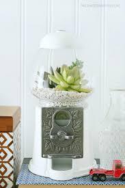 gumball machine succulent planter gumball machine gumball and