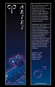 43 best fun facts about aries ppl images on pinterest aries