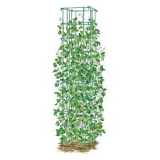 amazon com bean tower heavy gauge bean trellis trellises