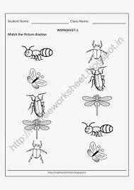 picture matching worksheets insects