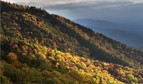 fall color archives blue ridge parkway daily maps pictures
