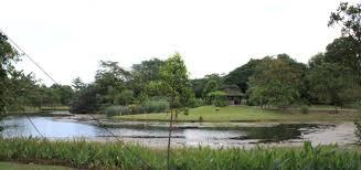 Singapore Botanic Gardens Mrt by Singapore Botanic Garden Addgrainonearth