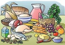 food u0026 nutrition a handbook for namibian volunteer leaders
