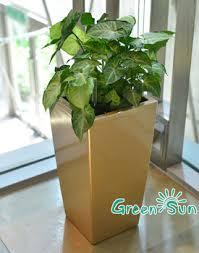 large plastic decorative flower pots outdoor planter indoor