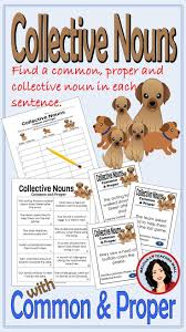 best 25 collective nouns ideas on pinterest awesome group names