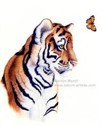paintings of large cats tiger and paintings by marilyn