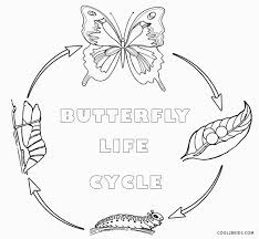 pumpkin life cycle coloring page coloring pages ideas