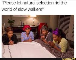 dopl3r com memes please let natural selection rid the world of