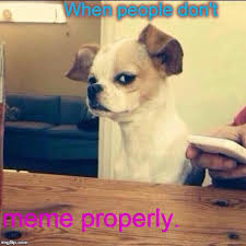 Annoyed Dog Meme - i was going to use comic sans but i didn t want to torture you