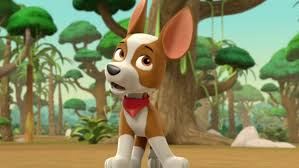 paw patrol s3 ep315 tracker joins pups episode