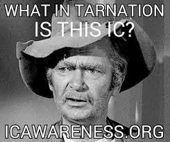 Tina Meme - 2016 meme entries by tina ic awareness month