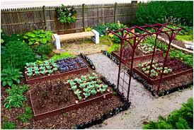 full image for wonderful vegetable garden ideas small backyards