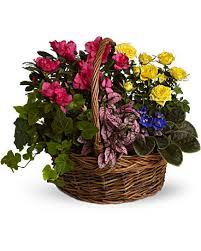 basket arrangements blooming garden basket teleflora
