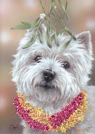 westie christmas cards in dog horse and country christmas cards
