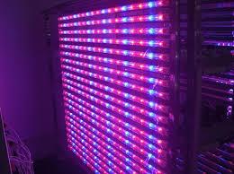hydroponic led grow lights 14 watt hydroponic led tube grow lights blue red light source