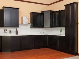 self closing hinges for kitchen cabinets monsterlune modern
