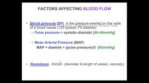 Blood Pressure Map Anatomy U0026 Physiology Map U0026 Svr Youtube