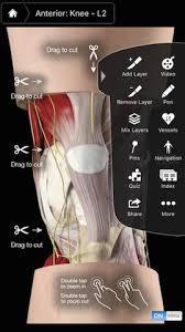 3d Knee Anatomy Review Of Knee Pro Iii U0026 3d4medical Musculoskeletal Anatomy Apps