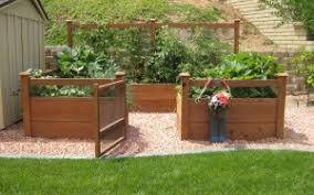 gardens to gro u2013 ready made vegetable gardens