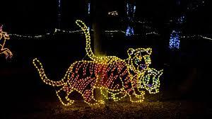 Zoo Lights Phoenix 3 7 Million Lights To Glow At Zoolights Western Mass News Wggb