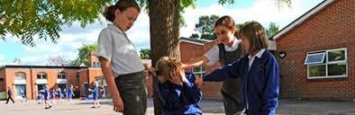 imagenes bullying escolar comienzo del nuevo curso escolar elche detectives