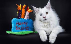 Amazing Cake Birthday Cake Recipes Ideas And Inspiration