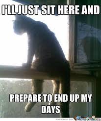 Depressed Cat Meme - depressed cat by zaiem meme center
