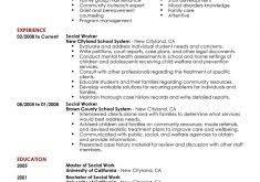 Social Worker Resume Sample by Download Sample Profile Summary For Resume Haadyaooverbayresort Com