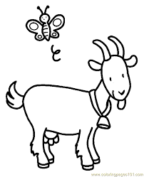 coloring cute coloring pages goat cartoon coloring