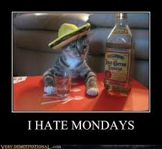Funny Tequila Memes - i hate mondays very demotivational demotivational posters very