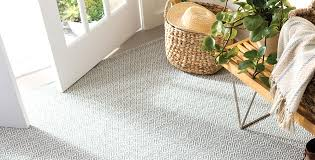 Albert And Dash Outdoor Rugs Why We Pet Indoor Outdoor Rugs
