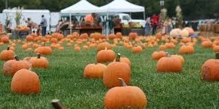 city of aurora il halloween hours the 10 best and worst cities for celebrating halloween