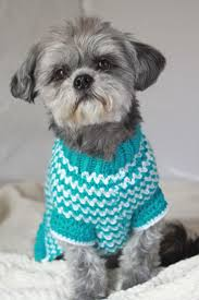 best 25 small dog sweaters ideas only on pinterest dog sweaters