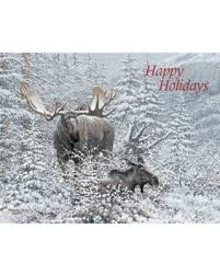 boxed christmas cards sale here s a great deal on lang winter boxed christmas cards