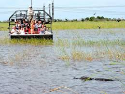 fan boat tours miami miami day trip and florida everglades airboat ride triphobo