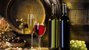land of wine wine tour in kakheti region tasting and exploring