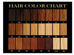 hair color chart home price list texture color chart order hair medium hair styles