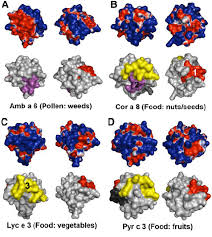 cuisine mol ulaire d inition surface protein characterization and potential antigenic region