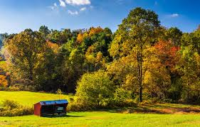 small shed and autumn trees in rural york county pennsylvania