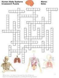 human body systems 5th grade science vocabulary crossword puzzle