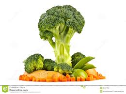 vegetable tree model royalty free stock photo image 25227455