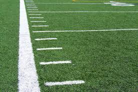 Georgia Bulldog Rugs Fresh Georgia Bulldog Football Field Rug 8155