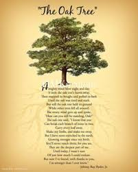 oak tree symbolism stand pages of wish